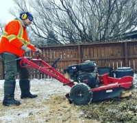 small stump grinder grinding stumps