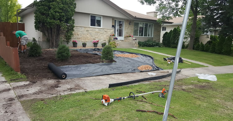 Landscaping Services Winnipeg MB
