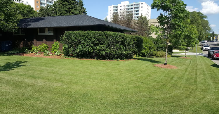 Lawn Aeration Services in Winnipeg Manitoba