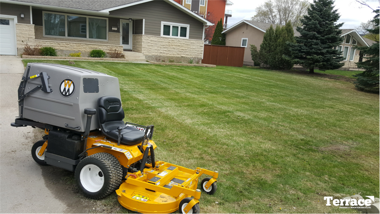 walker riding mower with freshly striped front lawn
