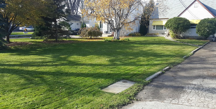 Lawn Care Services in Winnipeg Manitoba