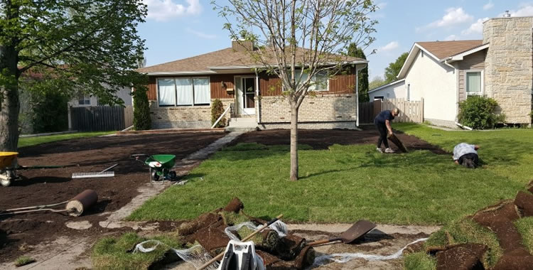 New Lawn Installations Winnipeg Manitoba